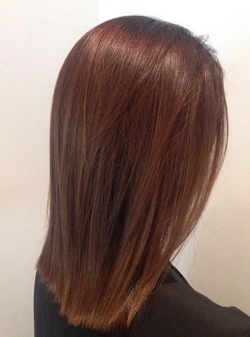 3 reddish brown with a golden sheen1 - Каштановый цвет волос: оттенки, фото, краска, как покраситься