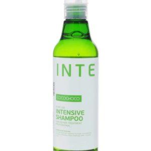 шампунь COCOCHOCO INTENSIVE 300x300 - Интенсивный шампунь COCOCHOCO INTENSIVE для сухих волос, 250 мл/ 500мл