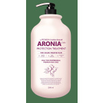 Маска с аронией для защиты цвета Institute-beaut Aronia Color Protection Treatment, 100мл/500 мл/2000мл