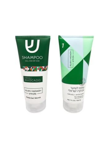 ALAN HASDASH ШАМПУНЬ ИЗРАИЛЬСКИЙ АВОКАДО 348x464 - Шампунь для окрашенных волос Keiras shampoo for coloured and treated hair, 400/1000 мл