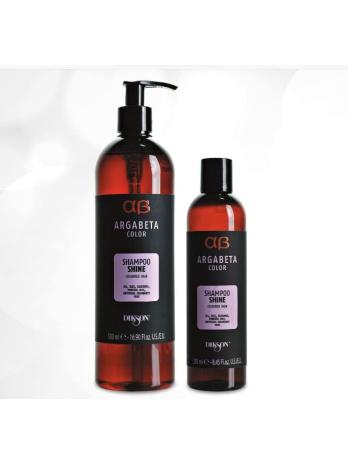 Шампунь для окрашенных волос с маслами Argabeta color Shampoo shine, 250мл/500мл